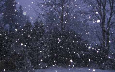 Winter outbreaks in Snowfall