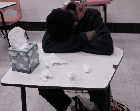 Seasonal allergies make it difficult for students at NAHS to stay alert in school.