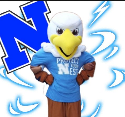 Norristown still plans to bring its famous spirit to school in a virtual Spirit Week and Homecoming event this year.